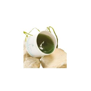 algae_body_pack_gel__beauty_groothandel_pedimed